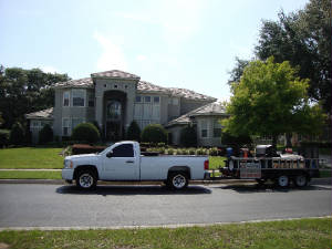 roof cleaning tampa florida 2